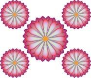 Ilustração da flor Ilustração Royalty Free