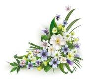Ilustração da flor da mola Foto de Stock Royalty Free