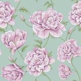 Ilustração da flor da peônia do teste padrão Fotografia de Stock Royalty Free