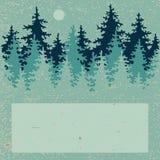 Ilustração da floresta conífera com um lugar para ilustração royalty free
