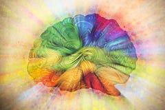 Ilustração da garatuja do cérebro com texturas ilustração do vetor