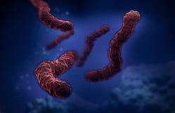 Ilustração da imagem do microscópio de elétron das bactérias Imagens de Stock Royalty Free