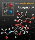 A ilustração da molécula do ácido hialurónico isolou o backgrou preto Fotografia de Stock