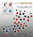 A ilustração da molécula do ácido hialurónico isolou o backgroun cinzento Fotos de Stock Royalty Free