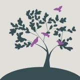 Ilustração da mola com as pombas na árvore Imagens de Stock