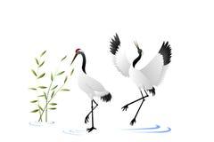 Ilustração da natureza do guindaste dos pássaros Fotografia de Stock Royalty Free