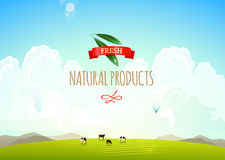 Ilustração da paisagem da natureza com montanhas, montes e nuvens Vacas em um prado verde Conceito de fresco, natural ilustração royalty free