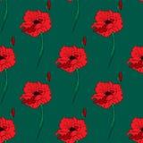 Ilustração da papoila vermelha sozinha Teste padrão sem emenda Fotos de Stock