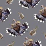 Ilustração da pomba Imagem de Stock Royalty Free