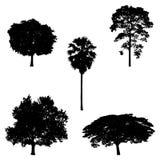 Ilustração da silhueta da árvore ilustração stock