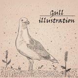 Ilustração da tinta da gaivota no fundo branco ilustração royalty free