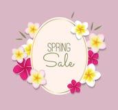 Ilustração da venda da mola com quadro e flores Imagens de Stock Royalty Free