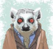 Ilustração Dapper do lêmure Foto de Stock