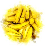 Ilustração das bananas ilustração do vetor