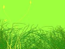 Ilustração das flores da grama verde e do amarelo ilustração royalty free
