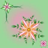 Ilustração das flores e das folhas fotografia de stock royalty free