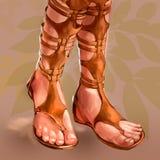 Ilustração das sandálias de couro das mulheres ilustração do vetor