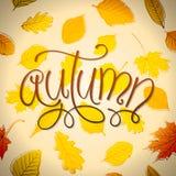 Ilustração de Autumn Vetora Foto de Stock Royalty Free