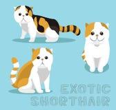 Ilustração de Cat Exotic Shorthair Cartoon Vetora ilustração royalty free