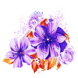 Ilustração de cor das flores em pinturas da aquarela Imagem de Stock
