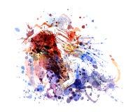 Ilustração de cor do vetor de um jogador de futebol Foto de Stock