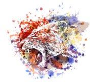 Ilustração de cor do vetor de uma cabeça da leoa ilustração do vetor