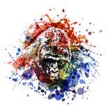 Ilustração de cor do vetor de uma cabeça do gorila Foto de Stock Royalty Free