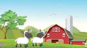 Ilustração de desenhos animados felizes de dois carneiros na exploração agrícola Foto de Stock