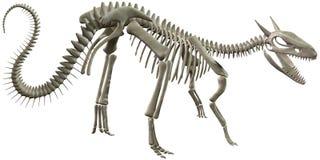 Ilustração de esqueleto dos ossos de dinossauro isolada Foto de Stock
