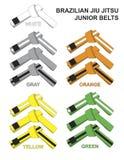Ilustração de Junior Brazilian Jiu Jitsu Belts Fotos de Stock Royalty Free