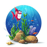 Ilustração de rochas subaquáticas com divertimento da alga e dos peixes Fotografia de Stock
