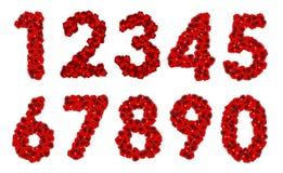 Ilustração de Rose Petals Realistic Number Vetora Fotos de Stock