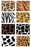 Ilustração de texturas da pele animal Fotografia de Stock