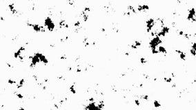 Ilustração de um fundo preto e branco Foto de Stock