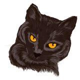 Ilustração de um gato pets Foto de Stock