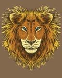 Ilustração de um leão Imagens de Stock