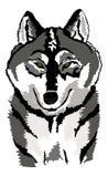 Ilustração lobo preto e branco/cinzento ilustração stock