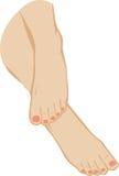 ilustração de um pé dos pés Imagem de Stock Royalty Free