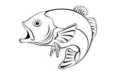 Ilustração de um peixe Foto de Stock
