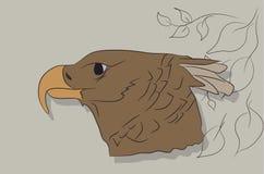 Ilustração de um retrato de uma águia, cor do vetor de desenho ilustração do vetor