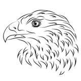 Ilustração de uma águia Fotografia de Stock Royalty Free