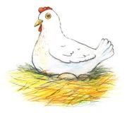 Ilustração de uma galinha poedeira e de seus ovos no fundo branco Fotografia de Stock Royalty Free