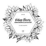 Ilustração desenhada mão do vetor Etiqueta com girassóis botanical ilustração do vetor