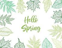 Ilustração desenhada mão do vetor Quadro da mola com folhas verdes, ilustração stock