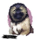 Ilustração digital da arte da raça caucasiano do cão-pastor ilustração royalty free