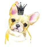 Ilustração do cão de cachorrinho da aquarela Raça do buldogue francês Fotos de Stock Royalty Free