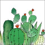 A ilustração do cacto verde Imagens de Stock Royalty Free