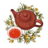 Ilustração do chá de Rooibos ilustração royalty free