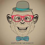 Ilustração do desenho da mão da forma do macaco no chapéu dos vidros, do laço e de jogador. Olhar do moderno. Estilo retro do vint Fotos de Stock Royalty Free