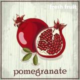Ilustração do desenho da mão da romã Fundo do esboço do fruto fresco Fotos de Stock